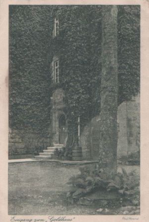Postkarte: Hausfassade - Eingang zum Goldhaus - 1925