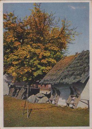 Postkarte: Stola - Herbstlicher WEinkel - ca. 1955