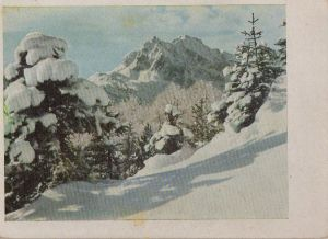 Postkarte: Karwendelgebirge - Winter - ca. 1960